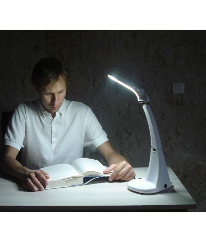 Natural Energy Light
